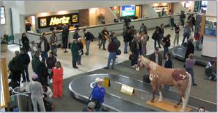 Billings Mt Rental Cars At Airport